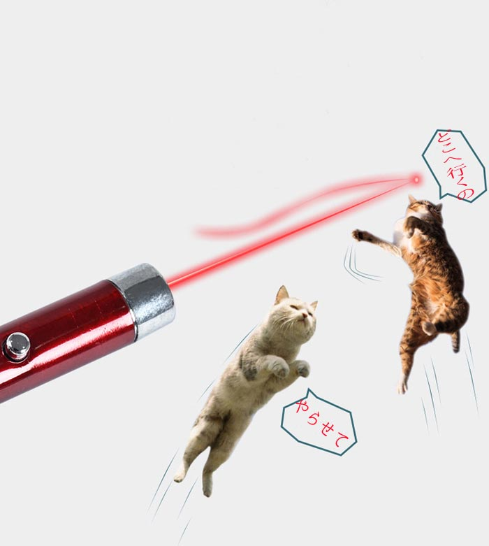 レーザーポインター5mw猫